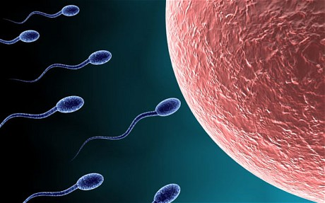 Cep Telefonu Kısırlık Sebebi: Sperm hakkında bilmediğiniz 10 enteresan bilgi