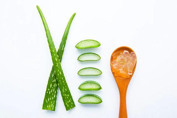 Yağlı Ciltler İçin Doğal Nemlendiriciler - Aloe vera ve gül esansiyel yağı