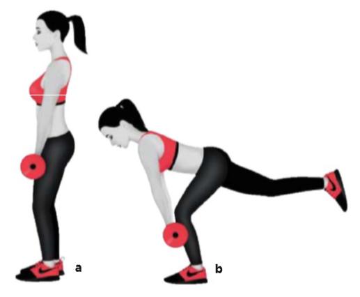 Üst bacaklarının üzerinde barı tutarak üstten kavra.Dizlerini yumuşak  bir şekilde bük ve ağırlığı sol bacağının üzerine ver (a).Barı yere doğru indirirken sol dizini hafifçe bük ve kalçandan ileriye doğru eğil.Barı vücuduna yakın tut ve sağ bacağını geriye uzat.Göğsün yukarıda,sırtın ve kolların düz olmalı (b).Sol topuğuna baskı yaparak hareketi tersten yap,kalçanı sık ve başlangıç pozisyonuna dön.Tüm tekrarları tamamla,bacak değiştir. TEKRAR: 15/15/15