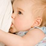 Sindirimi inek sütüne göre kolaydır, bebeğin sindirim sistemini zorlamaz
