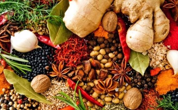 alternatif tıp-şifalı bitkiler