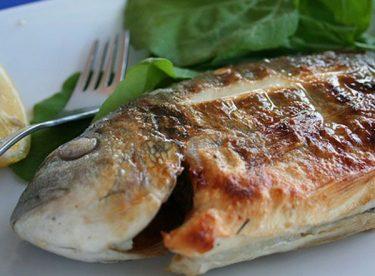 Balık Hangi Hastalıklara faydalı?