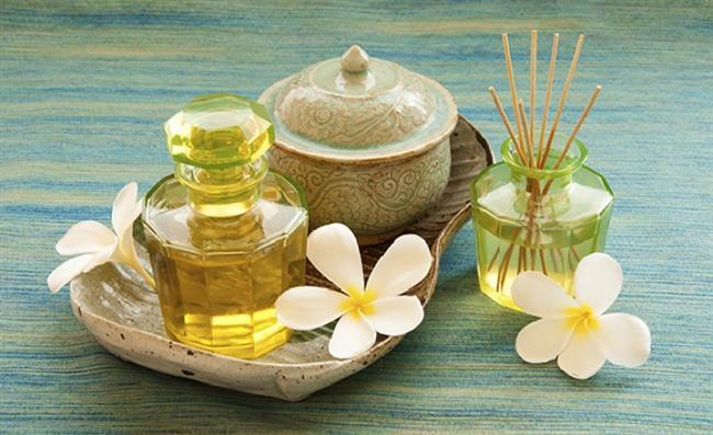 Kamelya yağı Japonya kökenli Kamelya çiçeğinin yaprak ve tohumlarından elde ediliyor. Çok çabuk emilen bu yağ, yağlı his vermeden ciltte pürüzsüz bir etki yaratıyor. İçeriğindeki antioksidan E vitamini ve Omega 3,Omega 6 ve Omega 9, yaşlandırıcı ve yıpratıcı serbest radikallerin oluşmasını engelliyor. Yüz bakımı ürünlerinde nem koruyucu, besleyici ve kırışıklıkların görünümünü azaltıcı özellikleri nedeniyle kullanılan değerli Kamelya yağı tüm ciltler için ideal. Ürünlerin içerik listesinde Camellia Sinensis (Camellia) Oil olarak görebileceğiniz bu yağ, özellikle yaşlanmaya eğimli, olgun, hassas ve kuru ciltler için uygun.
