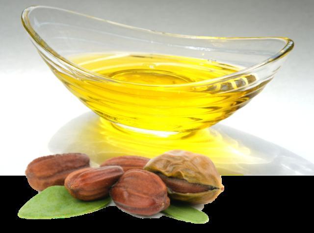 Jojoba yağı En değerli yağlardan biri sayılan jojoba yağını ürünlerinizin içerik listesinde Simmondsia Chinensis (Jojoba) Seed Oil olarak görebilirsiniz. Yoğun dokulu fakat çabuk emilime sahip jojoba yağı cildin doğal yağ yapısına (sebum) benzeyen kompozisyonuyla nemlendirici cilt bakım ürünlerinde özellikle kullanılıyor. Kozmetik ve cilt bakım endüstrisinde sıvı altın olarak tanımlanan jojoba yağının üretiminin az ama yararlı özellikleri nedeniyle talebinin yüksek olması, bu yağı oldukça değerli hale getiriyor. Yüksek oranda jojoba yağı içeren ürünlerin pahalı olmasının sebebi de bu. Tek başına cilde uygulandığında ağır, yağlı veya yapışkan his vermiyor. Cildin sebum katmanına benzeyen yapısıyla, jojoba yağı uygulandığında doğal bir katman gibi cildi satenimsi pürüzsüz dokunuşla sarmalıyor. Gerekli yağ asitleri ve antioksidan E Vitamini içeren yapısıyla ışıltılı ve yumuşak bir görünüş sağlıyor.