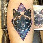 Kedi dövmeleri - Kedi Tattoo