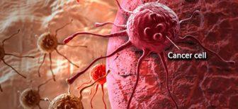 Kansere Karşı Koruyucu ve Kanserle Mücadele İçin Doğal Besinler
