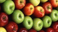 Günde 1 Elma İle Bu Hastalıklardan Korunabilirsiniz