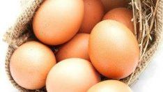 Yumurta Yerine Bu Malzemeleri  Kullanabilirsiniz