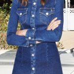 Kot Elbise Modelleri Gömlek Yaka Kısa Düğmeli
