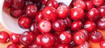 Yaban Mersini – Kekreyemiş Meyvesi Yağ Yakıyor!