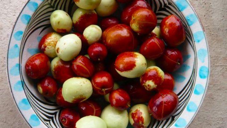 Hünnap Meyvesi Şifa Dağıtıyor, Faydaları İse Saymakla Bitmiyor!