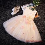 2019 Kız Çocuk Elbise Modelleri Pudra Kısa Kolsuz Çiçek Aksesuarlı Tül Etek